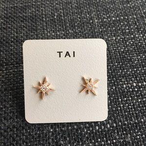 NEW Tai Stardust Earrings